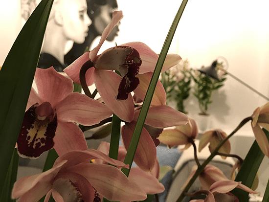 1-Wonenonline-blog-Style-jouw-interieur-met-een-orchidee-door-Styling-ID.png