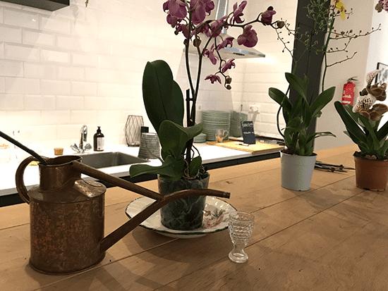 5-Wonenonline-blog-Style-jouw-interieur-met-een-orchidee-door-Styling-ID.png