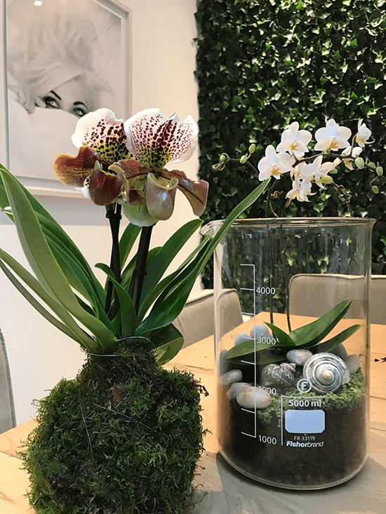 8-Wonenonline-blog-Style-jouw-interieur-met-een-orchidee-door-Styling-ID.png