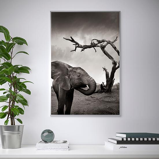 Ikea En Hasselblad Lanceren Kunstcollectie Wonenonline Nl