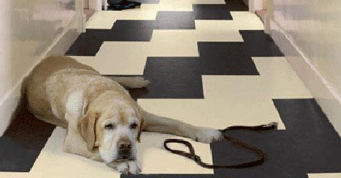 Verschil Marmoleum Linoleum : Vinyl rubber & marmoleum linoleum vloeren vloeren