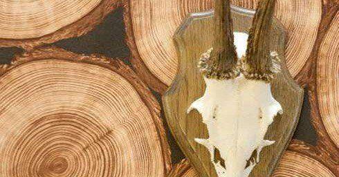 Behang Prints Opvallend : Stoer hout behang wandbekleding interieur