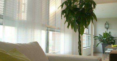 raamdecoratie en gordijnen