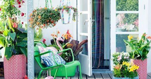 Decoratieve ideeën met planten voor een zomerse uitstraling